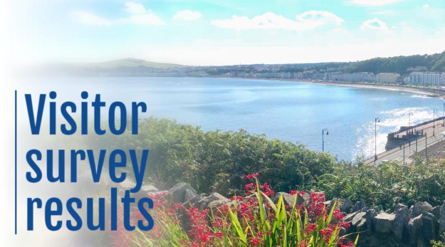 Finest.im visitor survey results